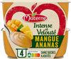 MATERNE Intense & Velouté SSA Mangue Ananas - Produit