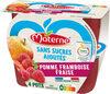 MATERNE SSA Pomme Framboise Fraise 4x100g - Product