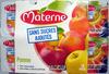 Pomme nature sans sucres ajoutés Materne - Product