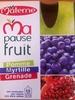 Ma pause fruit pomme myrtille grenade - Produit