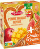 MATERNE SSA Pomme Mangue Goyave Céréales & Graines 4x90g - Product