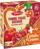MATERNE (Sans sucres ajoutés) Pomme Fraise Grenade Céréales - Product