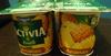 Activia Fruits (Ananas) - Produit
