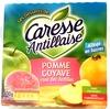 Compote pomme goyave rose des Antilles - Produit