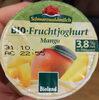 Bio Fruchtjoghurt Mango - Produit