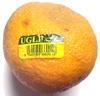 Pamplemousse Jamaïcain - Product
