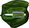 Pimientos verdes tipo italiano - Producte