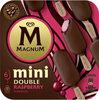 Magnum Glace Bâtonnet Mini Double Framboise 6x60ml - Produit