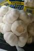 Fresh Garlic - Product